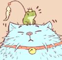 猫汤安卓版