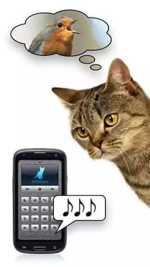 人猫翻译器软件下载